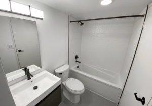 Toronto_Bathroom_Condo_White_with_Matte_Black_Three